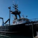 Pacific Storm vessel
