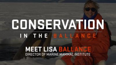 Conservation in the Ballance.  Meet Lisa Ballance, Director of OSU's Marine Mammal Institute