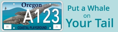 Put a Whale on Your Tail - sample of proposed State of Oregon whale license plate